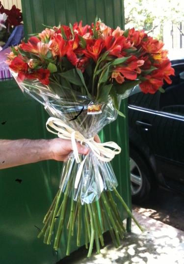via-flores-chico3