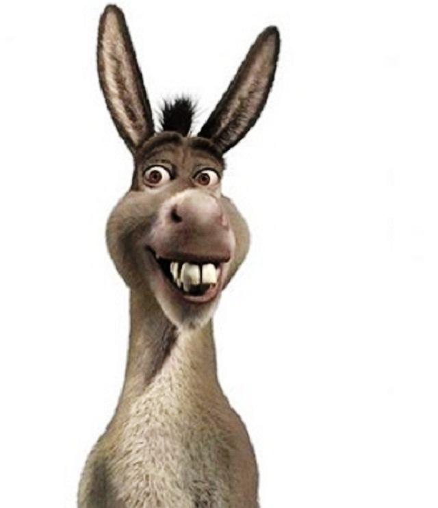 burro shrek