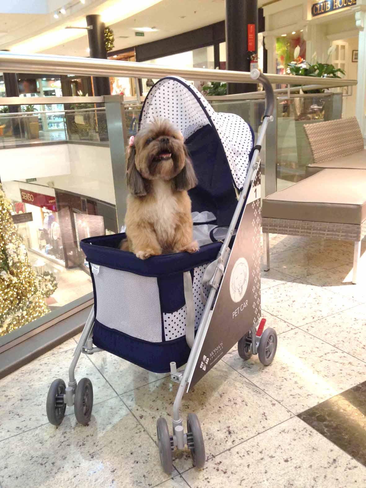 00 Matilda - Pet Car - Moinhos Shoppping (1) (2)