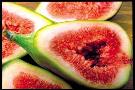 Figo C: Corel Stock Photo cd: Fabulous Fruit
