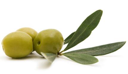 Elanthy-green-olives