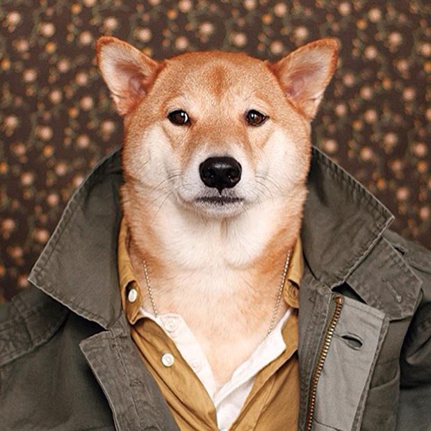 MAN omens-menswear-dog-09