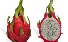 sementes-de-pitaiafruta-dragoorquidearosa-frete-gratis-20798-MLB20196268138_112014-F