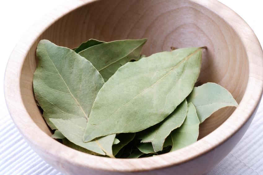 Laurer leafs in wooden bowl