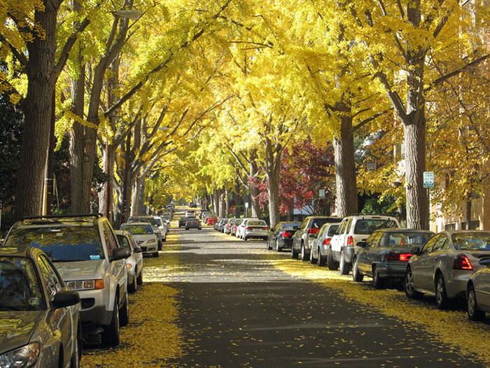 022Cumberland-Street-Washington-EUA