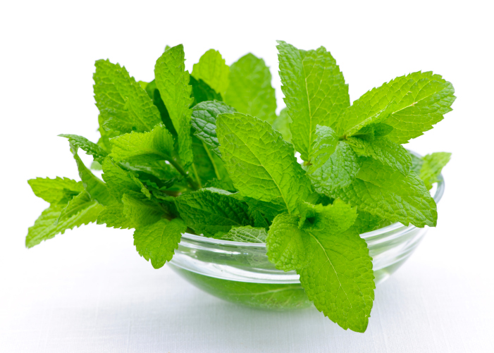 Mint sprigs in bowl