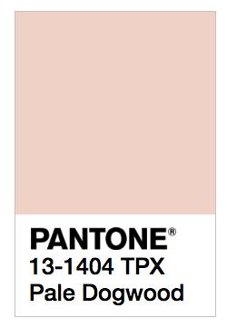 pantone-pale-dogwood