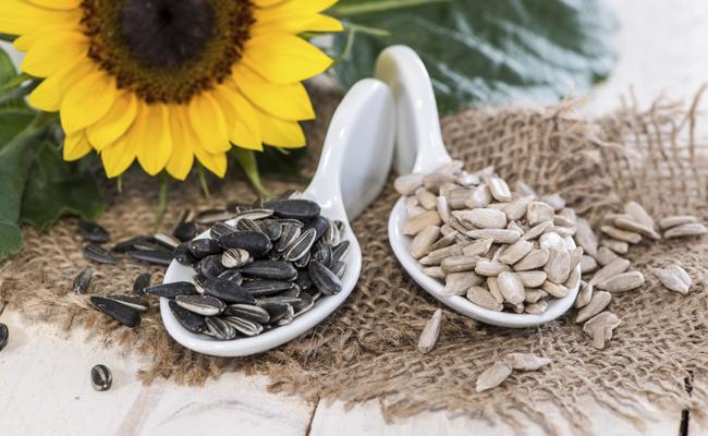 semente-de-girassol-2