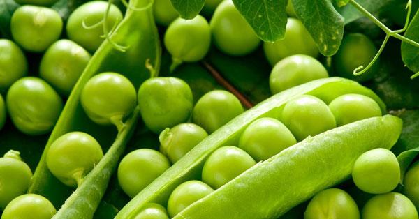 proteina-de-ervilha