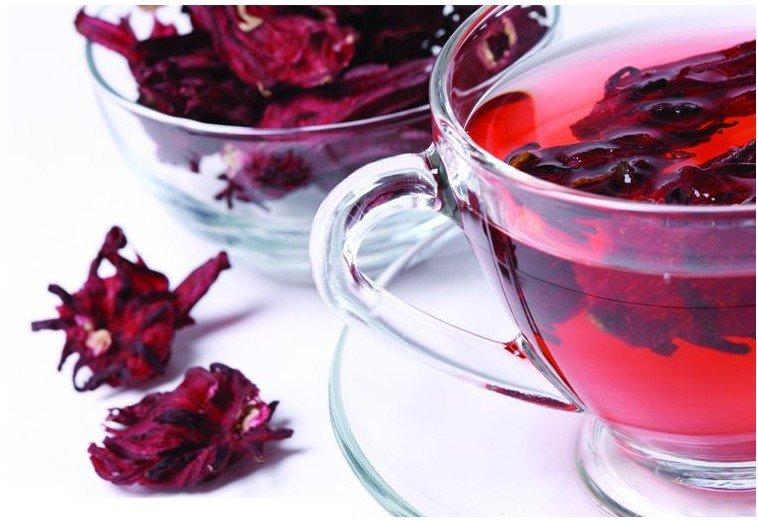 hibiscus-vermelho
