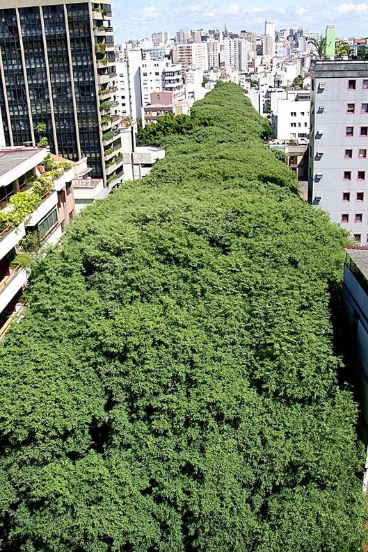 rua-goncalo-de-carvalho-ricardostricherpmpa-199x300