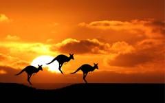 australia-2