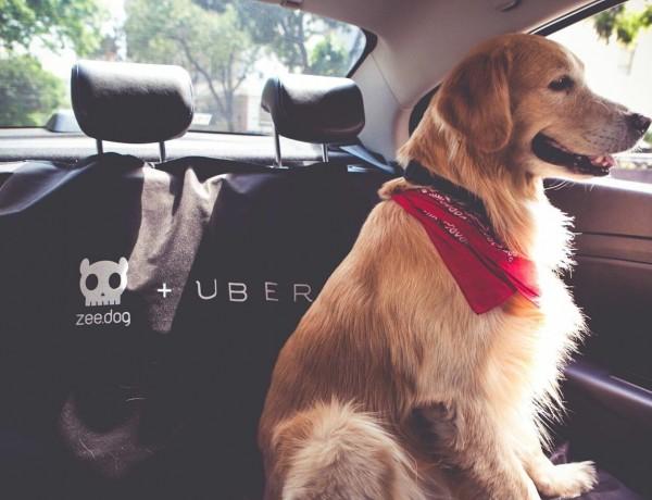 uberpet3