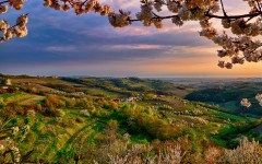 Italy-Lombardy-Collio-at-spring-valley-dusk-flowers-trees_1920x1200