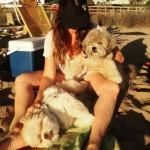 Preguiça na praia