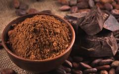 cacau-chocolate